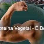 A Proteína Vegetal – É Boa??