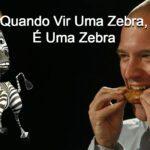 Quando Vir Uma Zebra, é Zebra!!